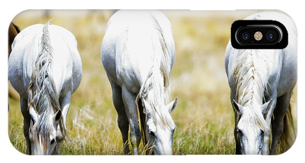 The Three Amigos Grazing IPhone Case