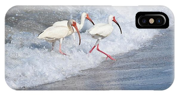 The Tide Of The Ibises IPhone Case