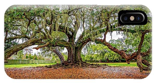 Steve Harrington iPhone Case - The Tree Of Life by Steve Harrington
