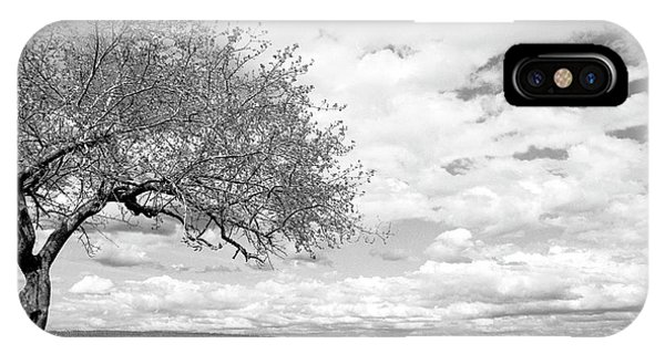 The Tree On The Hill IPhone Case