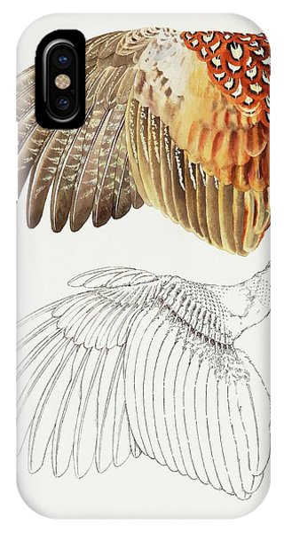 The Upper Side Of The Pheasant Wing IPhone Case