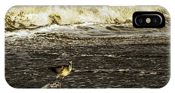 The Wading Willet  IPhone Case