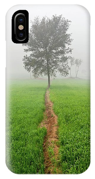 The Walking Tree IPhone Case