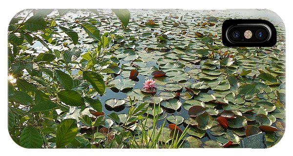 The Water Lily Pond Phone Case by Molly Dean