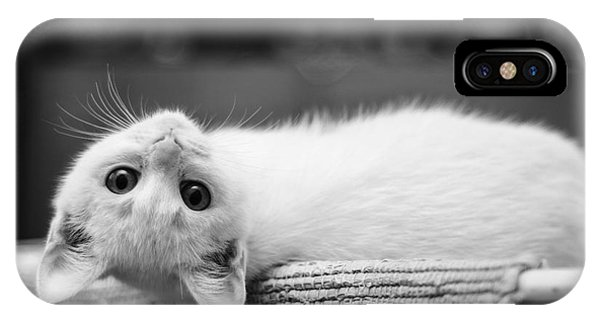 The White Kitten IPhone Case