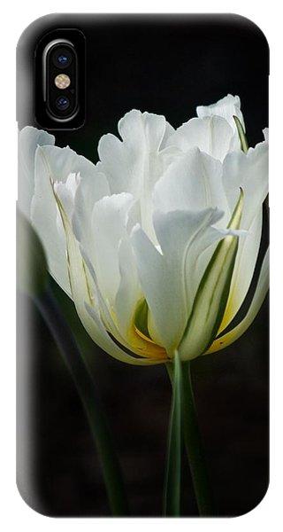 The White Tulip IPhone Case