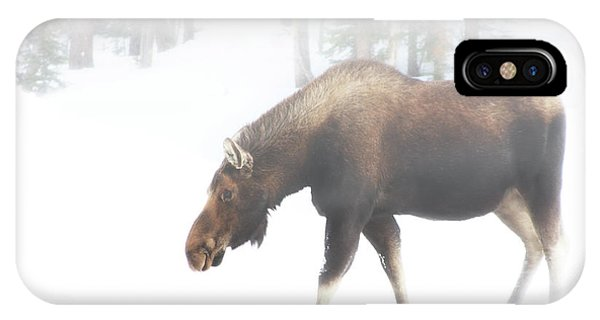 The Winter Moose IPhone Case