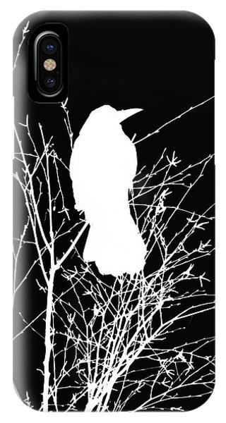 Raven iPhone Case - The Wisdom Of Crow by Philip Openshaw