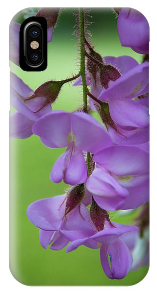 IPhone Case featuring the photograph The Wisteria by Mark Dodd