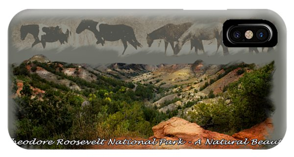 Theodore Roosevelt National Park IPhone Case