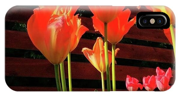 These Are #tulips From My Back Garden Phone Case by Dante Harker
