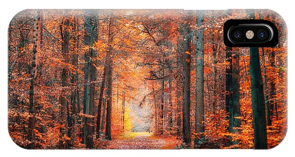 Thetford Forest IPhone Case