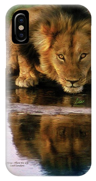 African Lion Art iPhone Case - Thirst For Life by Carol Cavalaris