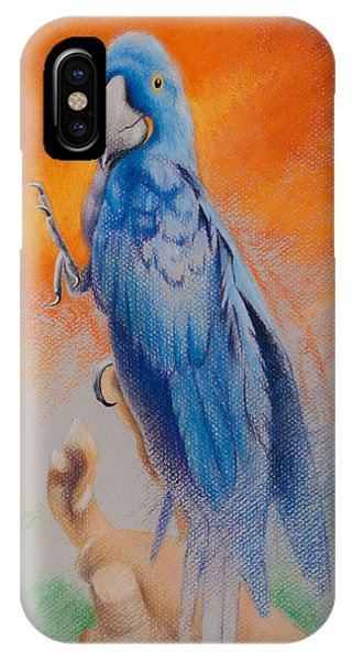 IPhone Case featuring the painting This Bird Had Flown by Joe Winkler