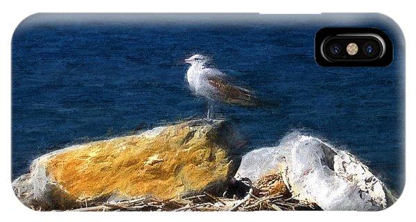 This Gull Has Flown IPhone Case