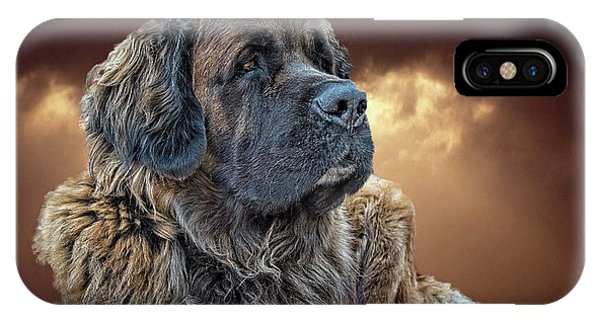 iPhone Case - This Is Grizz by Bill Linn