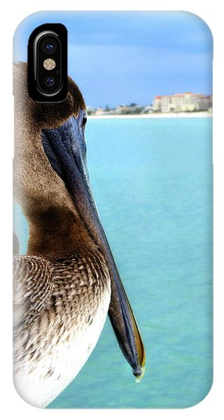 This Is My Town - Pelican At Clearwater Beach Florida  IPhone Case