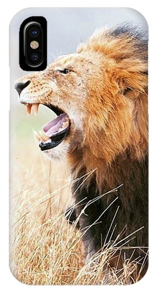 Lion iPhone Case - This Is Power by Happy Home Artistry