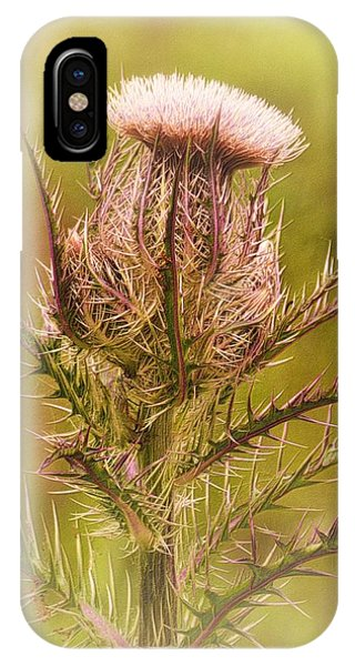 Thistle And Thorns Unfolding IPhone Case
