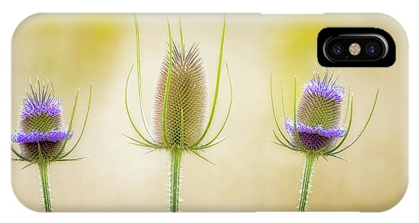 Thistle Heads IPhone Case