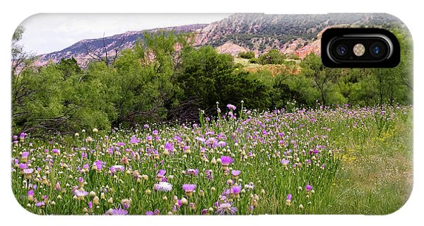 Thistles In The Canyon IPhone Case