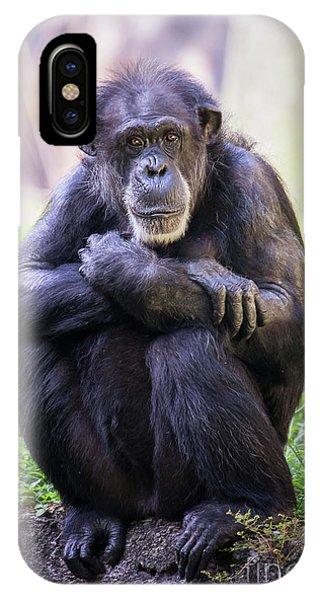 Thoughtful Chimpanzee  IPhone Case