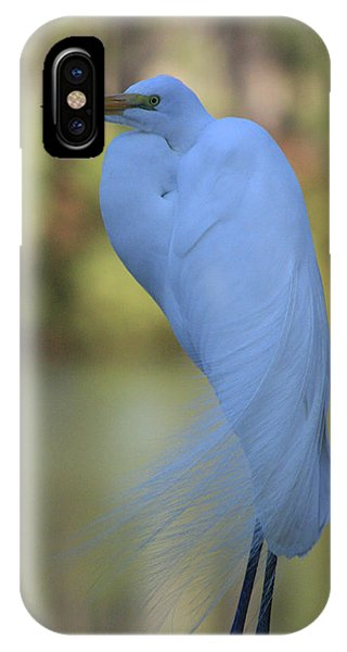 Thoughtful Heron IPhone Case