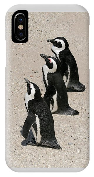 Three African Penguins IPhone Case