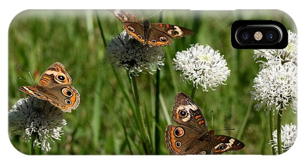 Three Buckeye Butterflies On Wildflowers IPhone Case