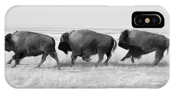 Three Buffalo In Black And White IPhone Case