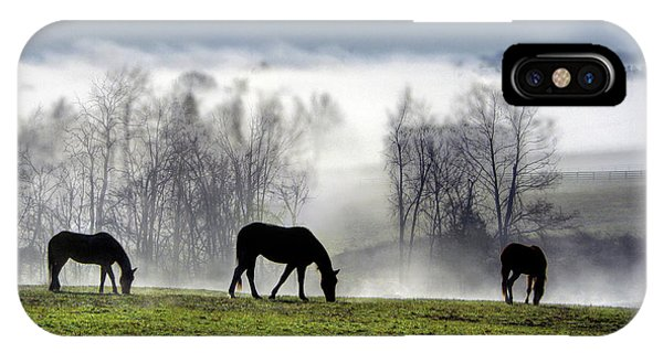 Three Horse Morning IPhone Case