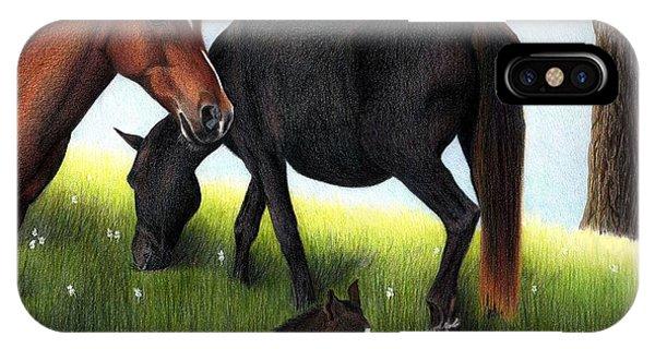Three Horses IPhone Case