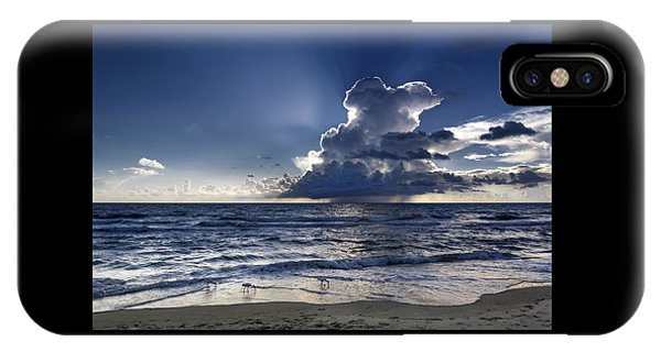 IPhone Case featuring the photograph Three Ibises Before The Storm by Steven Sparks