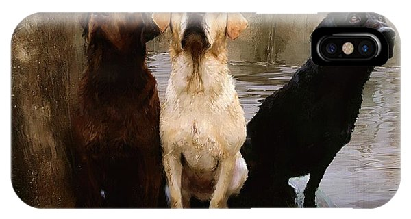 Fog iPhone Case - Three Labs by Robert Smith