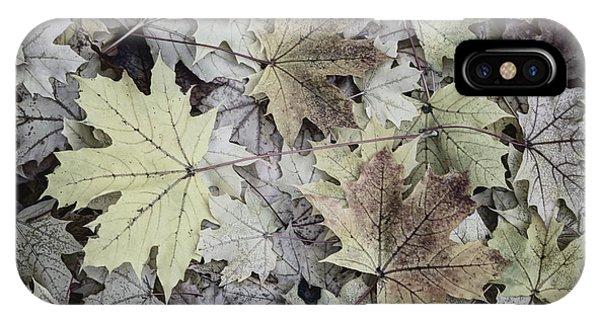 Three Leaves IPhone Case