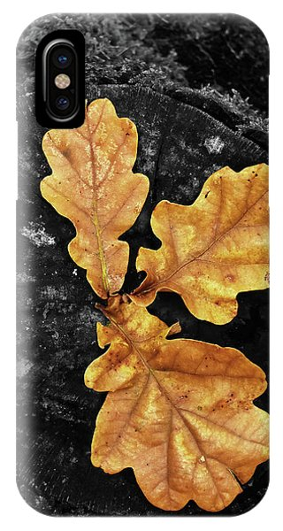 Three Leaves On Black IPhone Case
