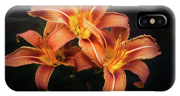 Trio iPhone Case - Three Lilies by Scott Norris