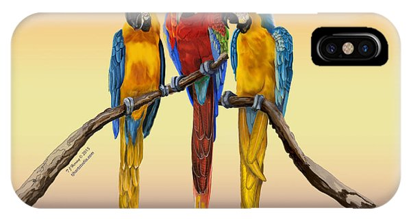 Three Macaws Hanging Out IPhone Case