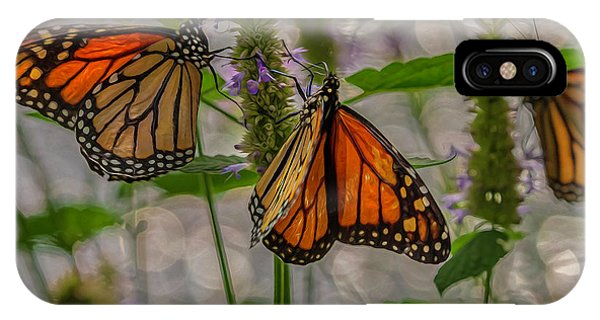 Three Monarch Butterfly IPhone Case