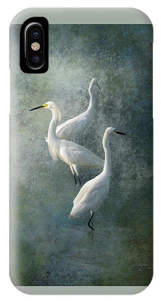Tidal Marsh iPhone Case - Three Of A Kind by Marvin Spates