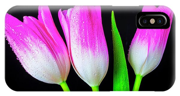 Black Tulip iPhone X Case - Three Pink White Tulips by Garry Gay