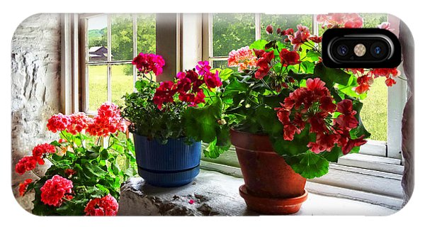 Three Pots Of Geraniums On Windowsill IPhone Case