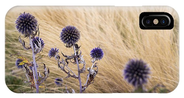 IPhone Case featuring the photograph Three Purple Echinops by Helga Novelli