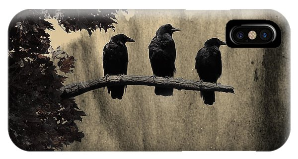 Starlings iPhone Case - Three Ravens Branch Out by Gothicrow Images