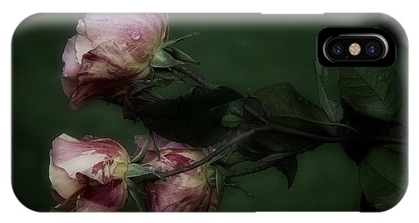 Three Romantic Roses IPhone Case