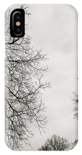 Branch iPhone Case - Three Trees by Linda Woods