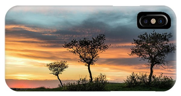 Three Trees On A Hill IPhone Case