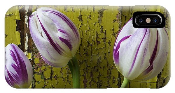 Three Tulips Against Yellow Wall IPhone Case