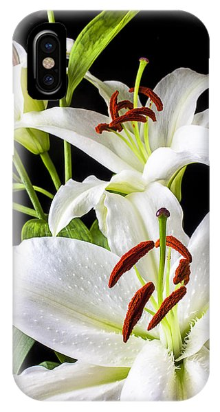 Floral iPhone Case - Three White Lilies by Garry Gay
