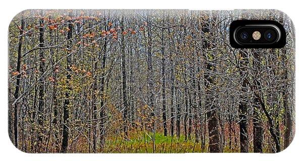 Through A Forest Wilderness IPhone Case